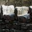 Buck Does topstones Reclaimed Stone Jowett Stone